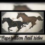 superstition-trail-rides