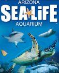 sea-life-aquarium